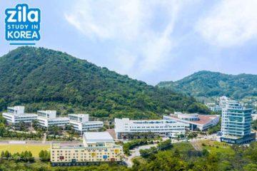 di-du-hoc-dai-hoc-songwon-han-quoc-송원대학교-university