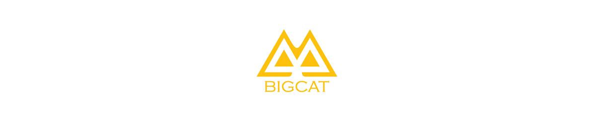 logo-Bigcat
