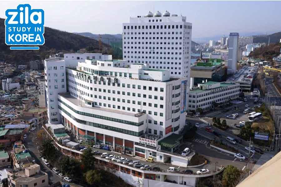 du-hoc-dai-hoc-Kosin-han-quoc-고신대학교-university