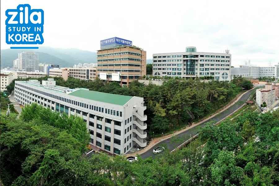du-hoc-dai-hoc-catholic-pusan-han-quoc-부산가톨릭대학교-university