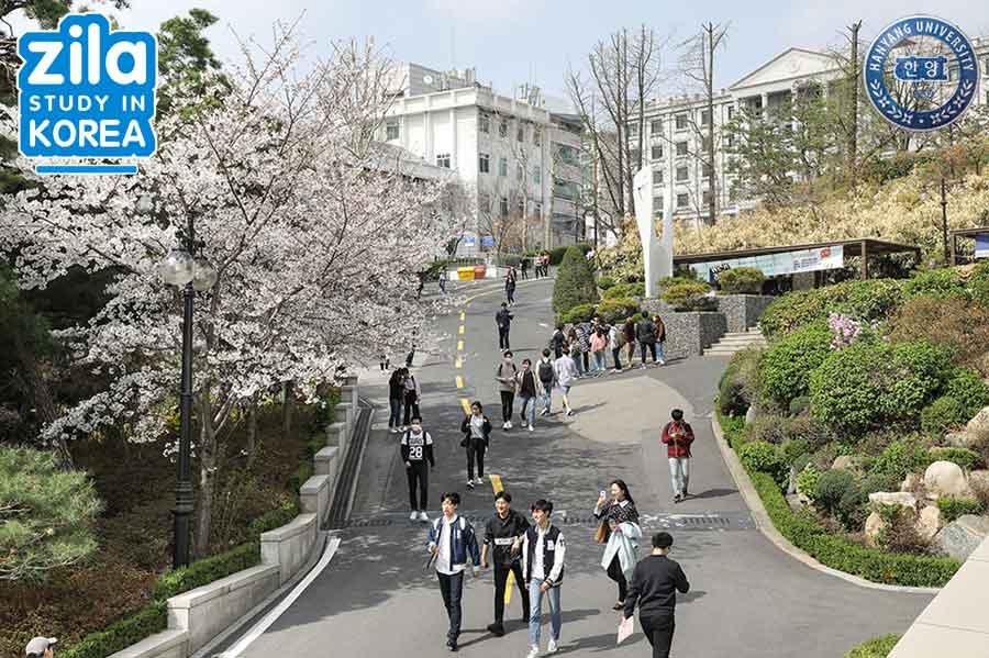 du-hoc-dai-hoc-hanyang-han-quoc-한양대학교-university-3