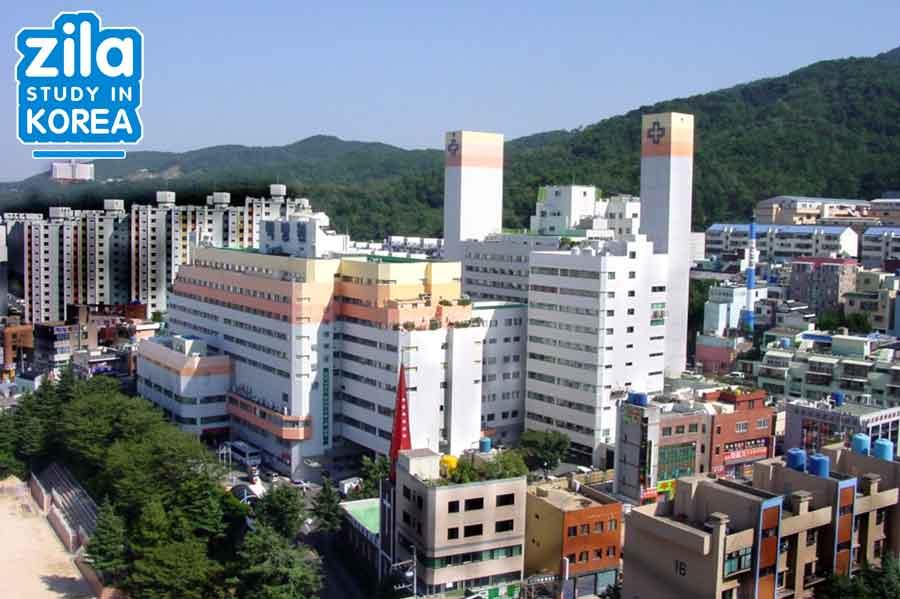 du-hoc-dai-hoc-inje-han-quoc-인제대학교-university