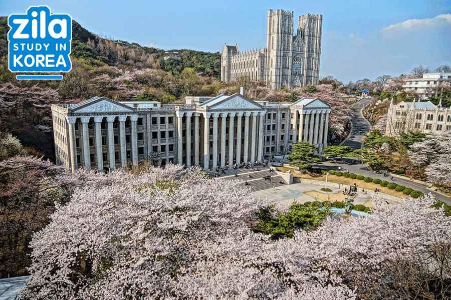 du-hoc-dai-hoc-kyunghee-han-quoc-경희대학교-university