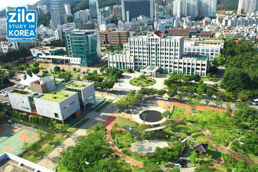 du-hoc-dai-hoc-quoc-gia-pukyong-han-quoc-부경대학교-university