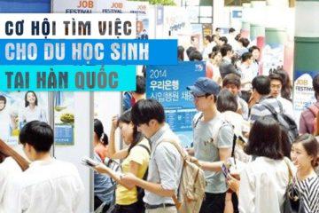 co-hoi-tim-viec-cho-du-hoc-sinh-tai-han-quoc